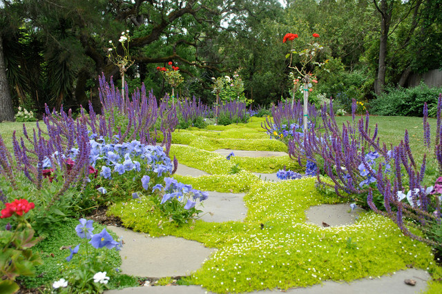 Low Maintenance Ground Cover, How To Replace Grass With Ground Cover