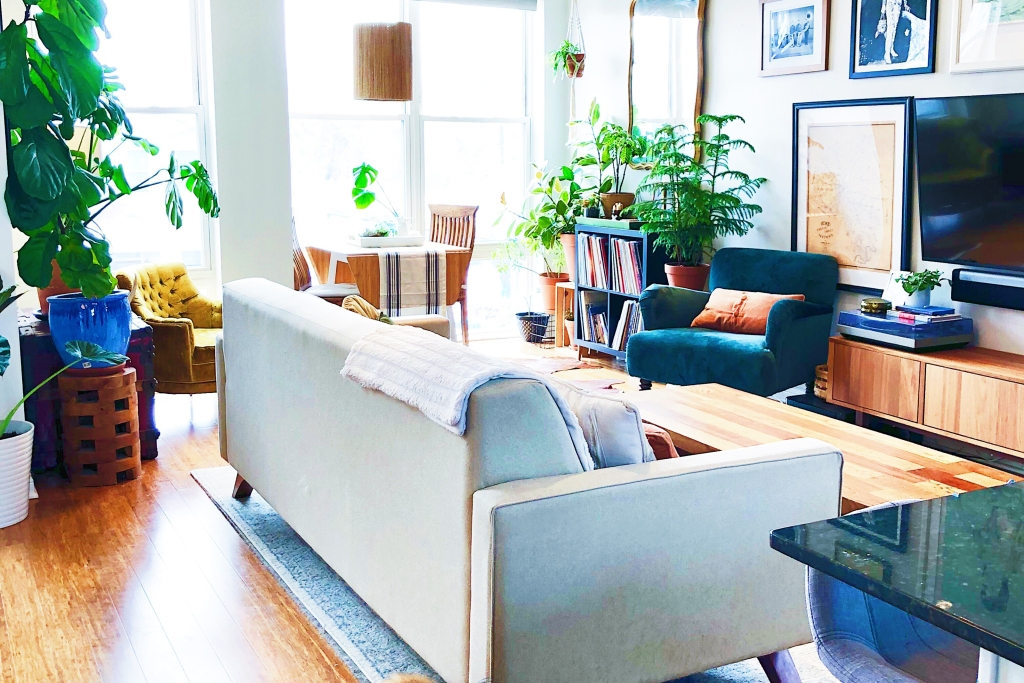 Cream couch in living room with large windows, plants, dog