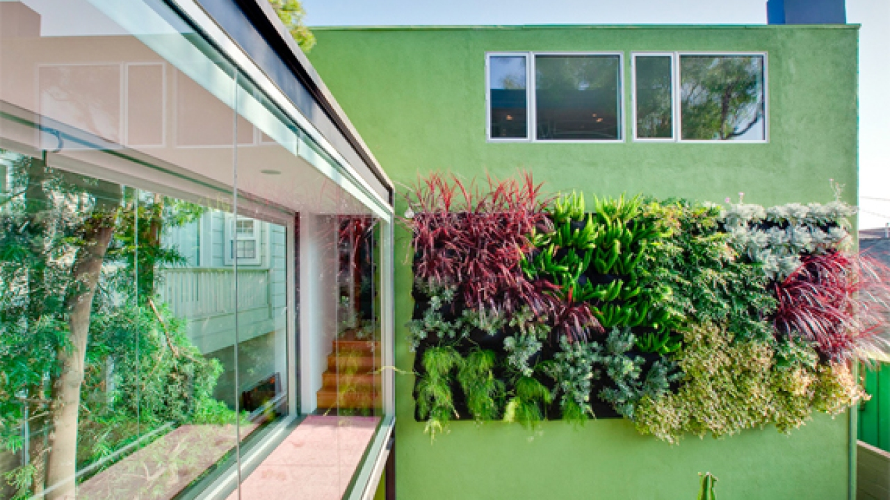 Living Wall Vertical Gardening Ideas Home Gardening