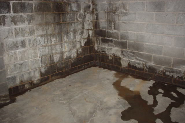 Basement wall with water damage