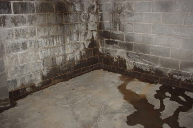 Water Proofing Basement Waterproofing Costs