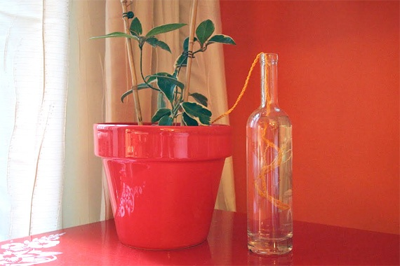 Automatic Plant Watering System, How To Care For Houseplants While On Vacation