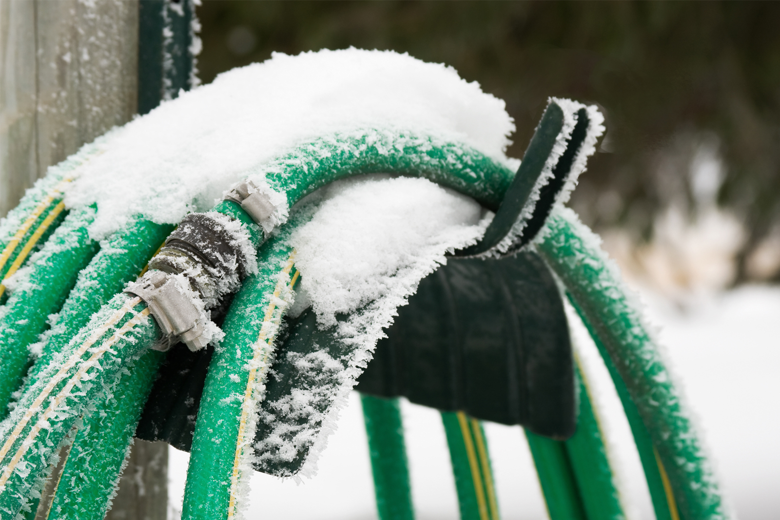 Frozen garden hose outside a house