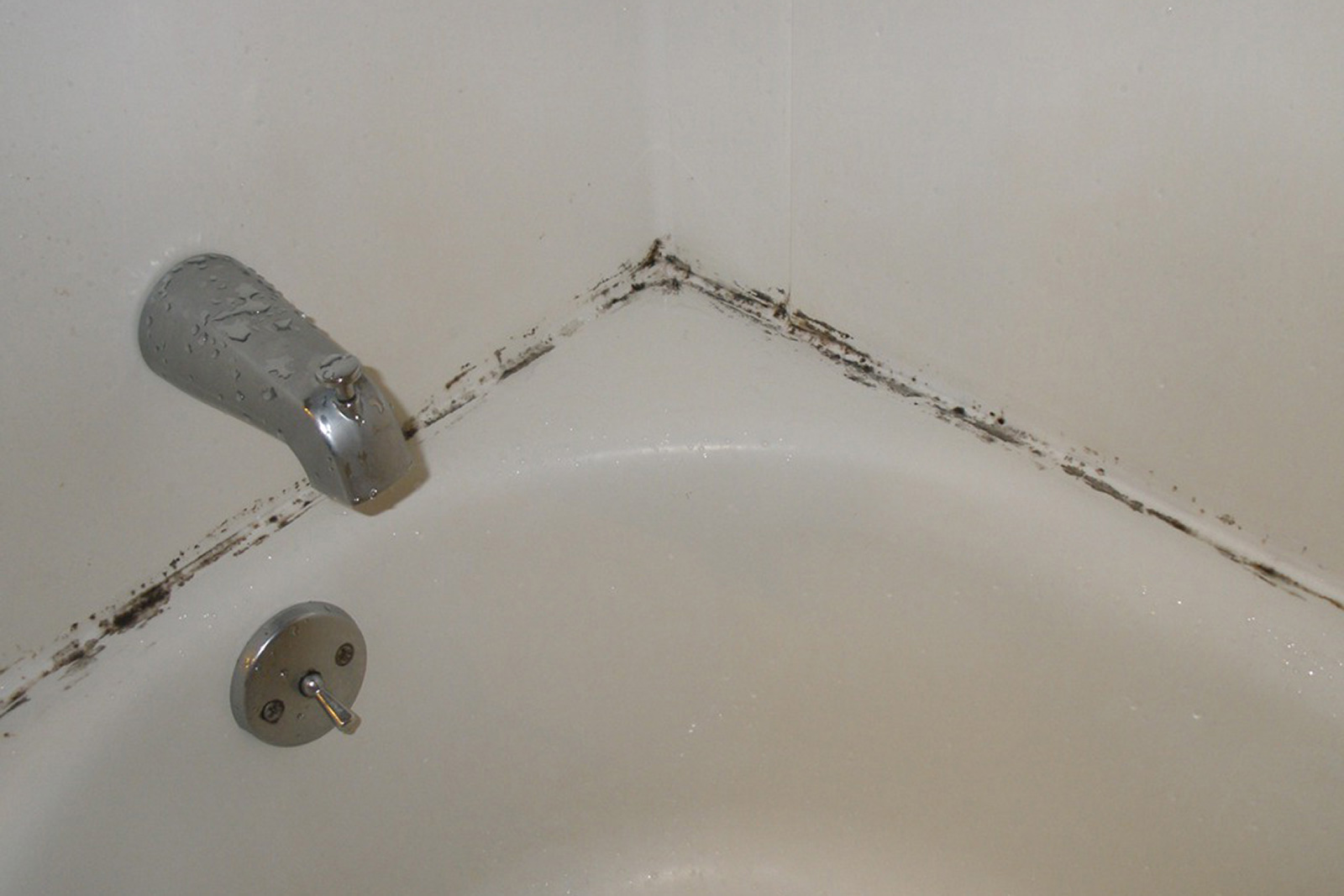 Mold around a bathtub | Prevent mold on bathroom ceiling