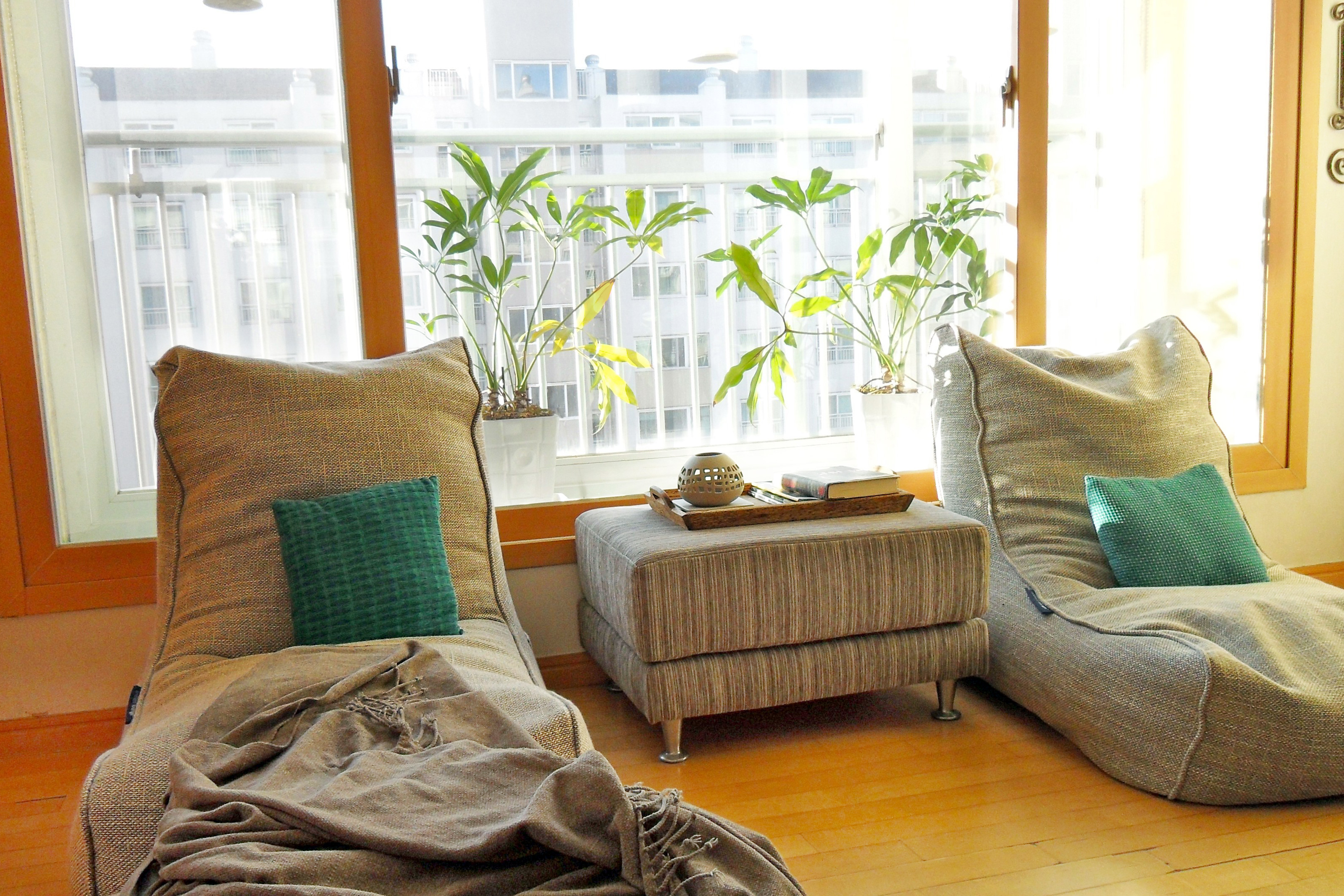 Comfortable chairs in front of a window in an apartment