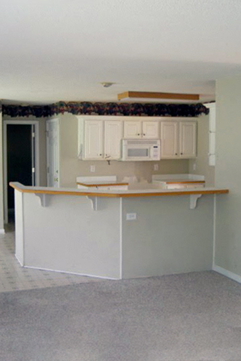 Before the kitchen renovation