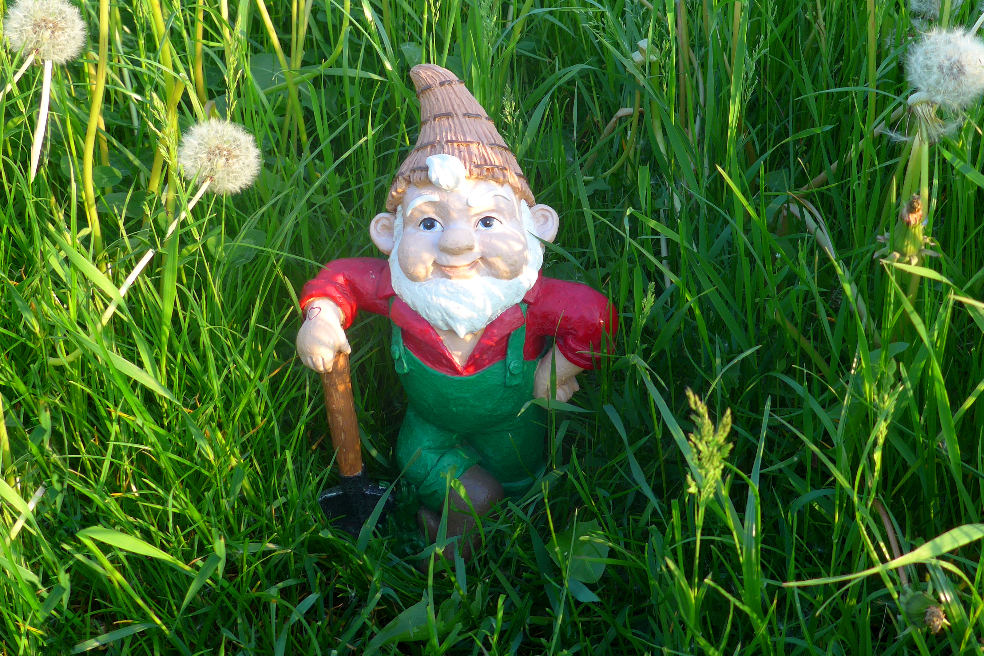 Lawn gnome in red shirt and green overalls leaning on axe