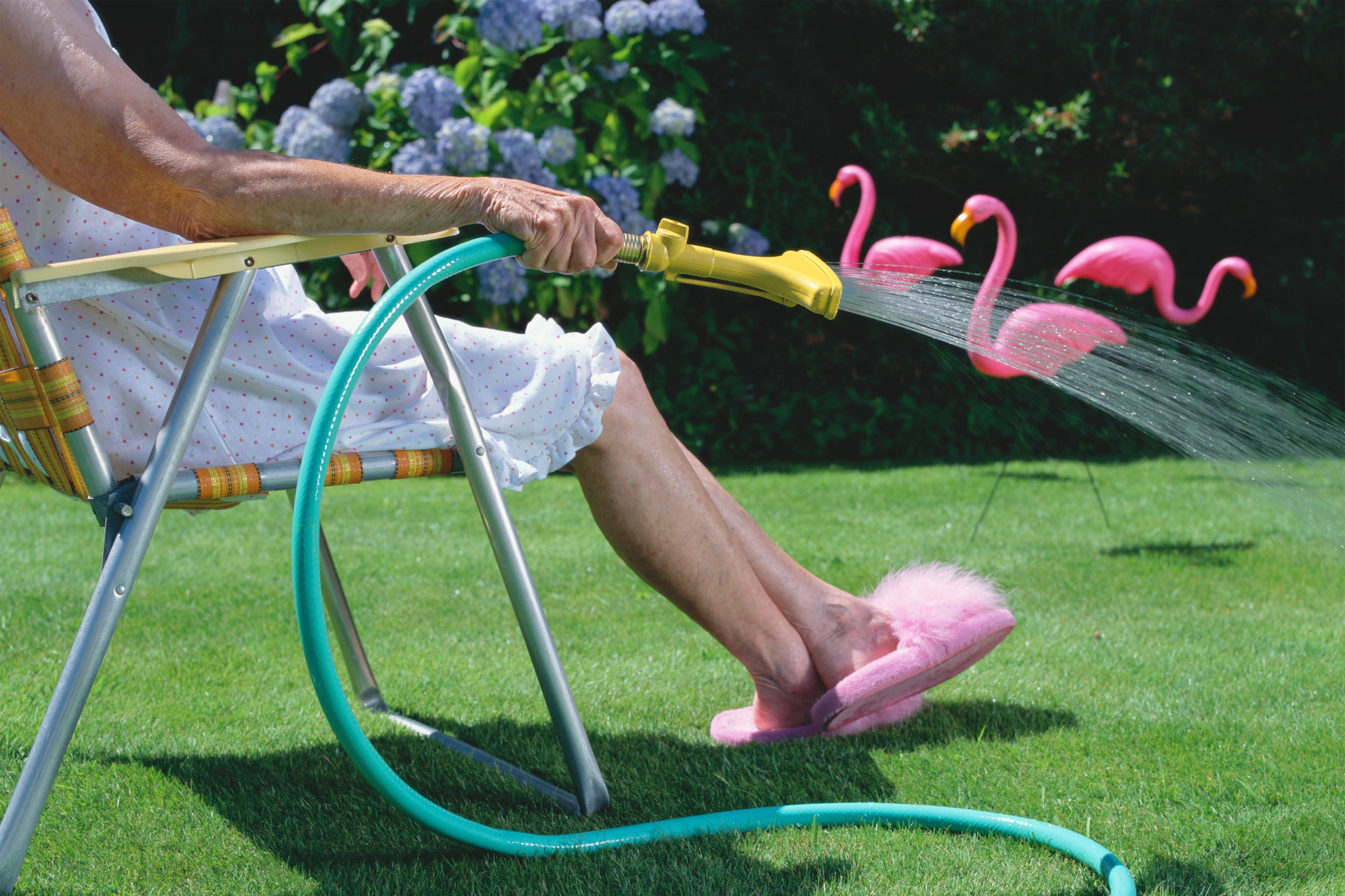 Old woman in lawn chair watering lawn with pink flamingoes