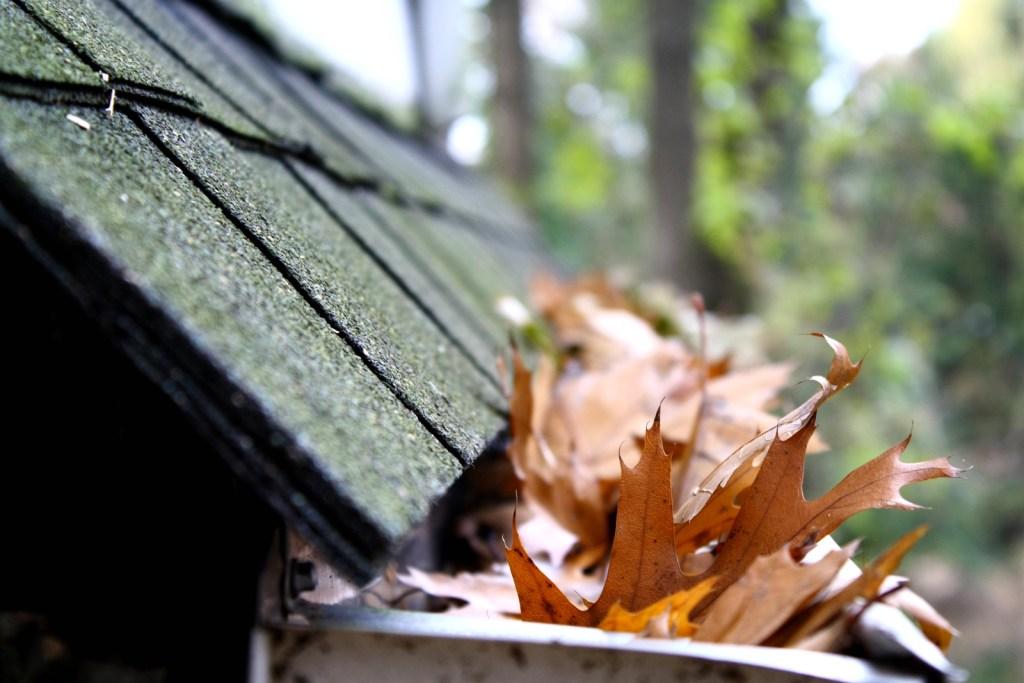 Leaves clogging a home's gutter