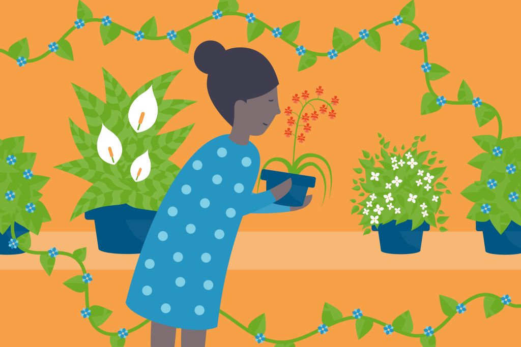 Illustration of a woman with air-purifying houseplants