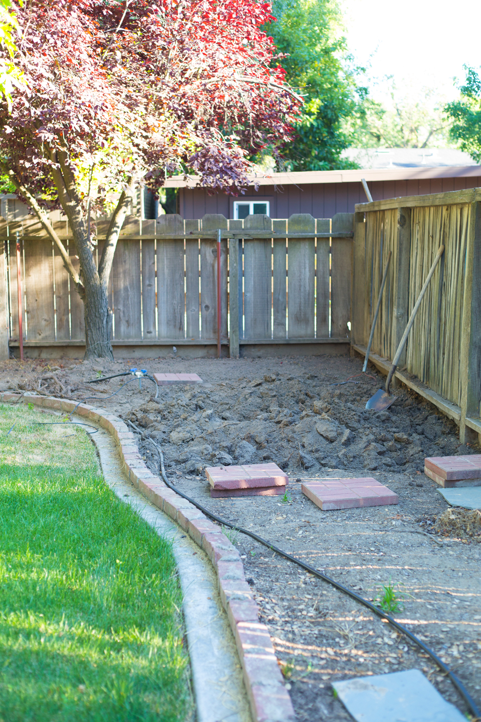 A before image of a backyard with grass and dirt patch