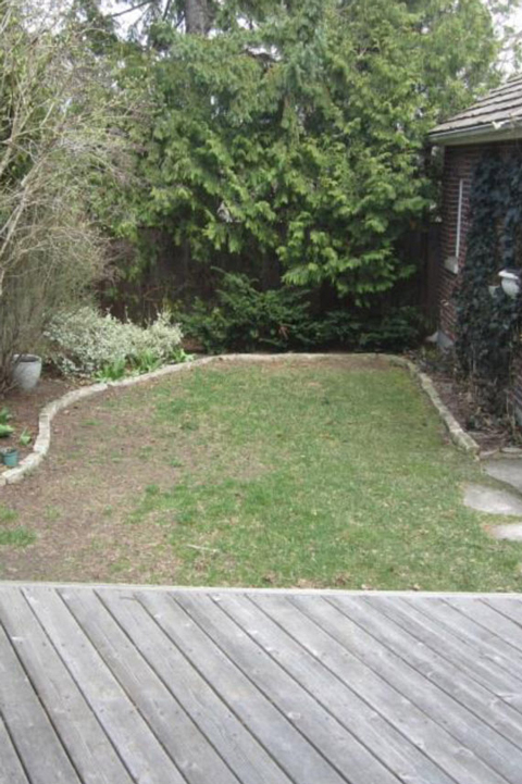 A before image of a patch of grass in a backyard