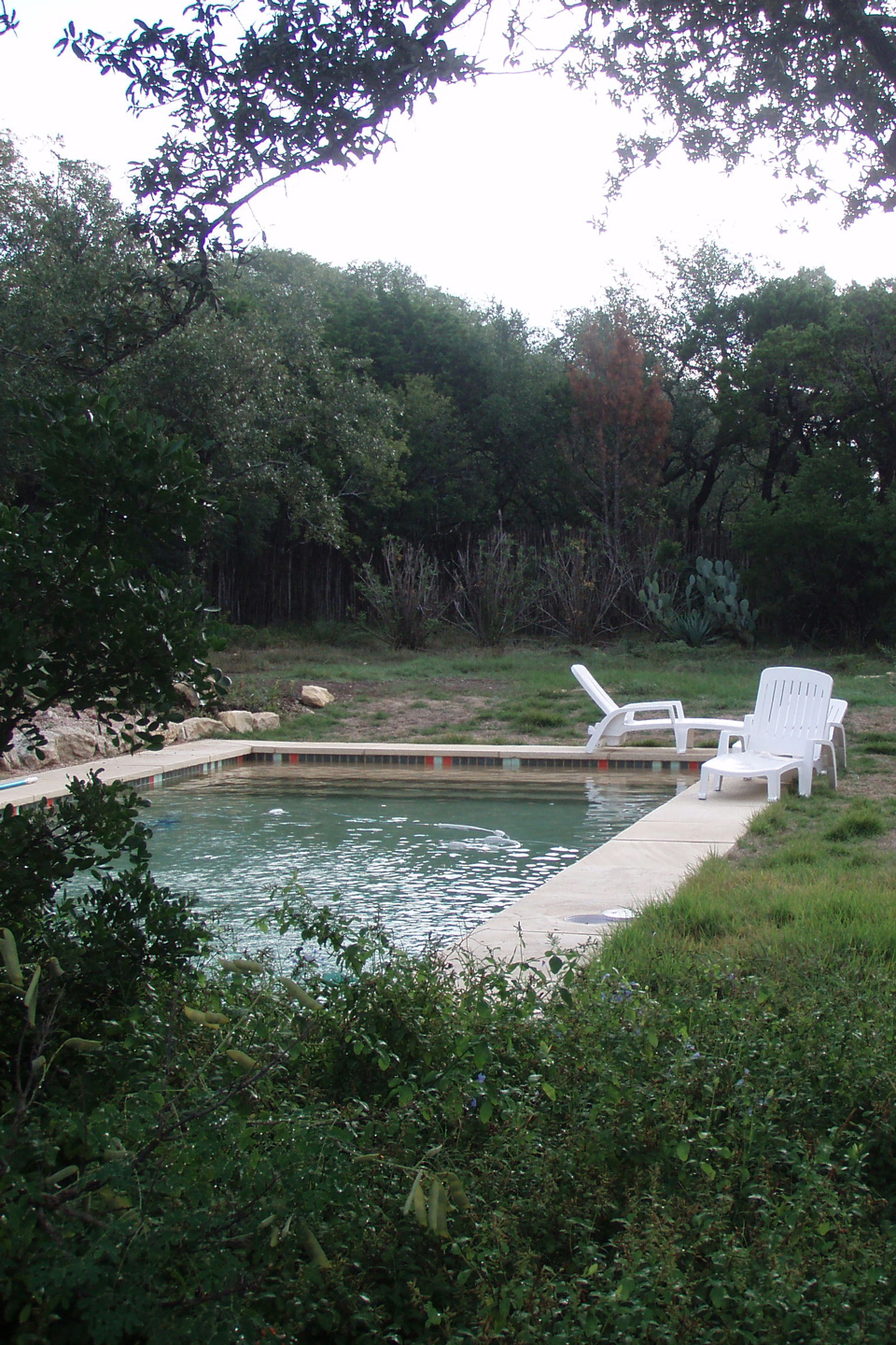 A before image of patchy grass and a pool