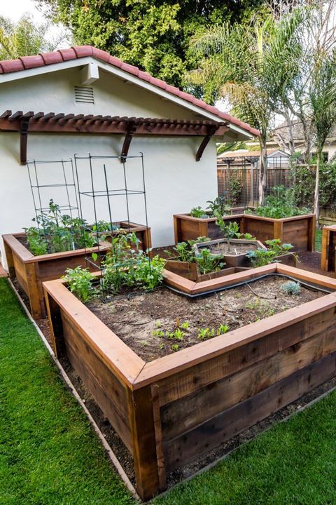 An after image of a backyard with raised garden beds