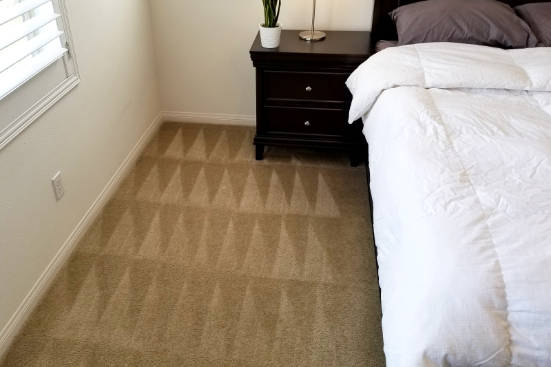 Brown carpet with perfect geometric-patterned vacuum lines