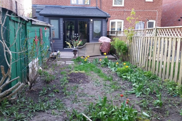 Modest deck and patchy, sparse backyard with weeds
