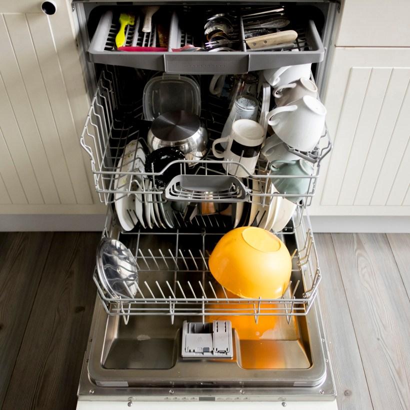 Dishwasher full of dishes